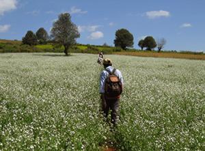 Inlay Trek Myanmar