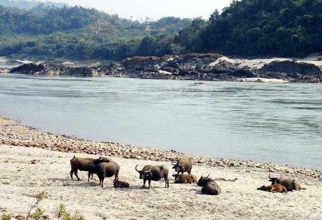 Myitkyina Myanmar