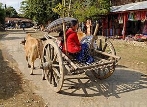 Putao Myanmar